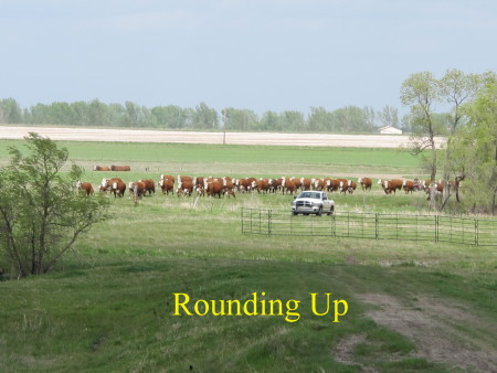 a4._Rounding_up